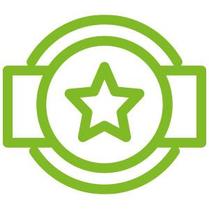 icon-stern-top-leistung
